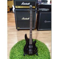 Fender American Standard...
